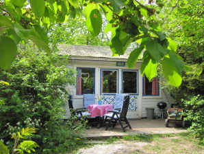 Holiday cottage Villa Holland- WIT