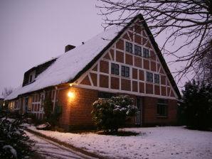 Haus zum Deich - Ferienwohnung im Alten Land