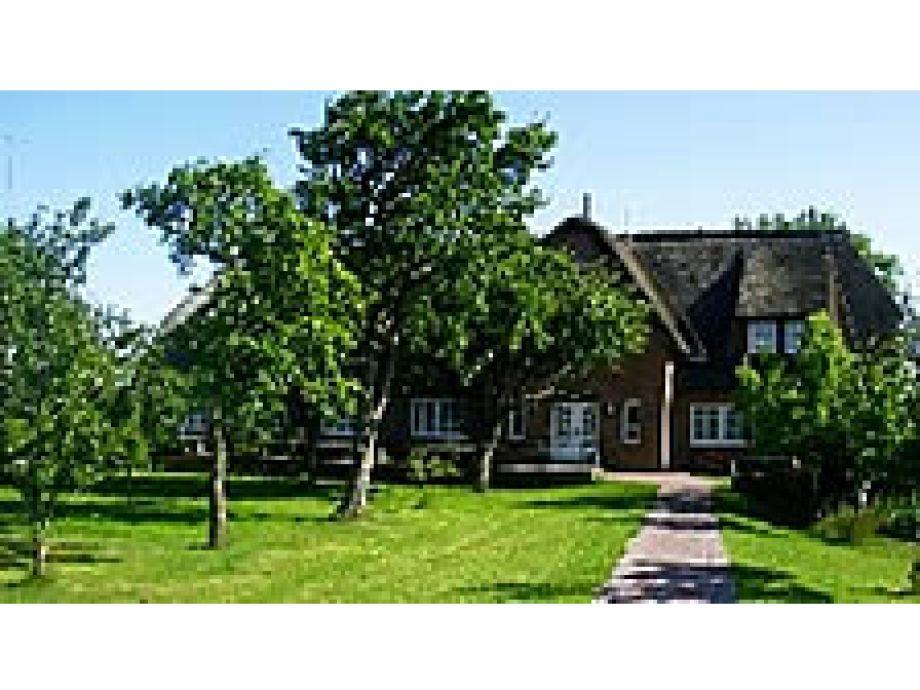Ferienbauernhof Ketels in Borgsum