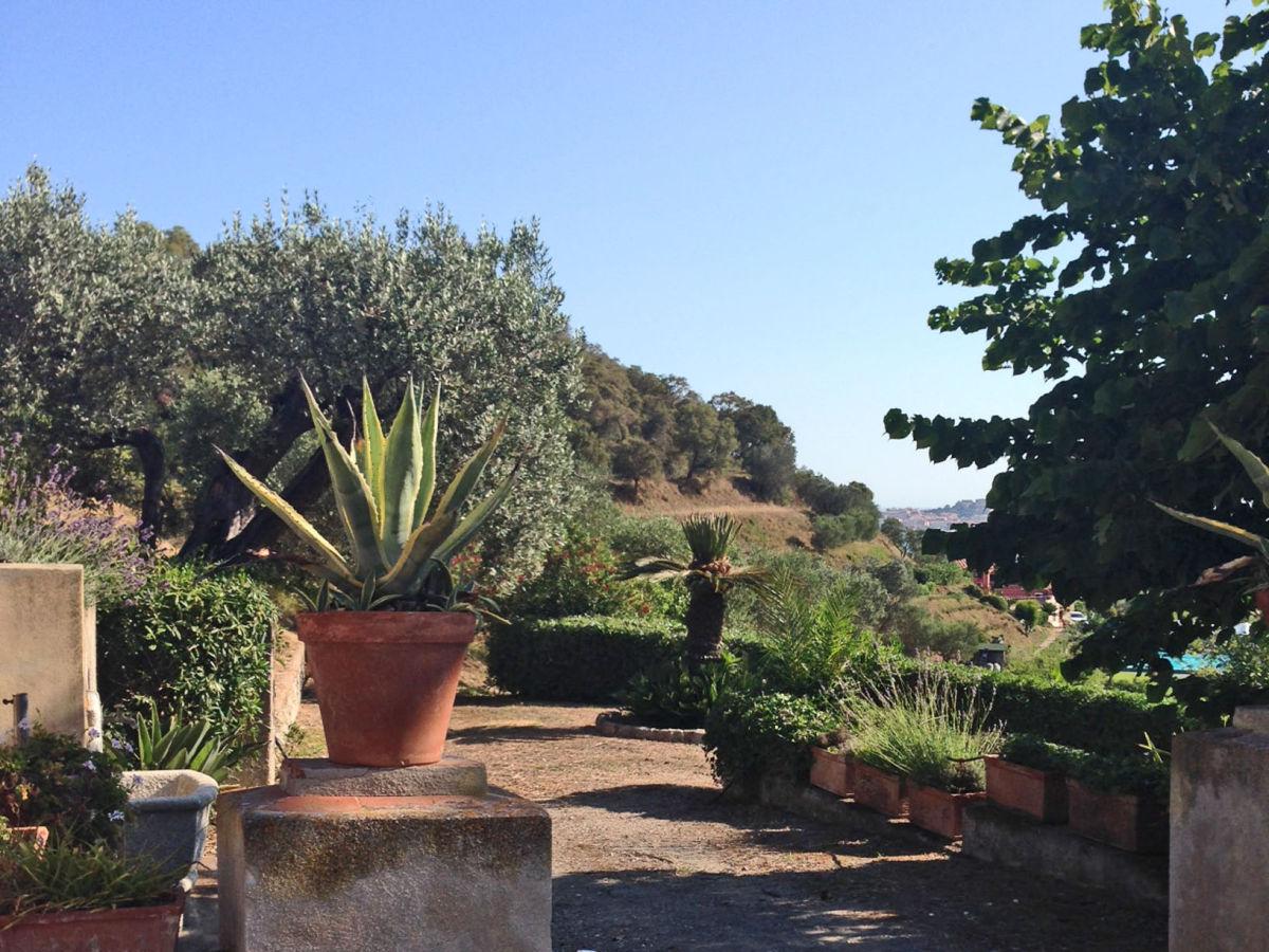 Villa letizia insel elba firma imm reiseservice kg for Garten pflegeleicht angelegt