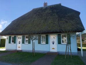 Ferienhaus Bodden-Schwalbe