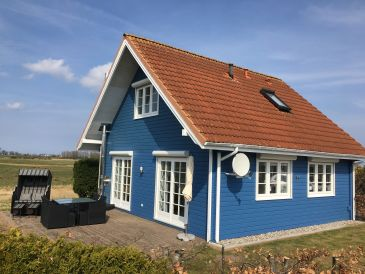 "Holiday house Luxury holiday home ""Traum in Blau"""