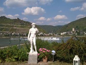 Ferienwohnung Rhein
