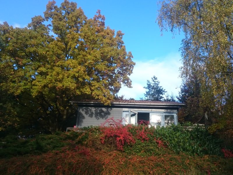 Ferienhaus Dornhecke