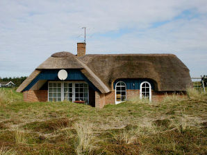 Holiday house - Klegod beach/North Sea thatched roof house