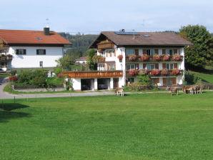 Ferienwohnung Senn 2 Enzensberg