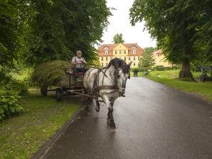 Ferienwohnung Grafensuite im Schloss Lühburg