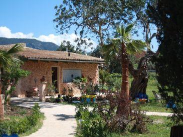 Ferienwohnung in der Finca Bunyola