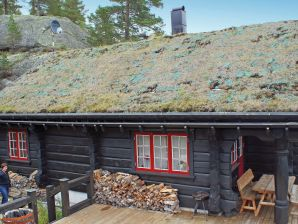 Ferienhaus Bortelid, Haus-Nr: 43303