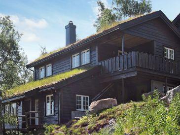 Ferienhaus Åseral, Haus-Nr: 51795