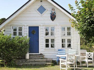 Ferienhaus Fjell / fjell, Haus-Nr: 58392