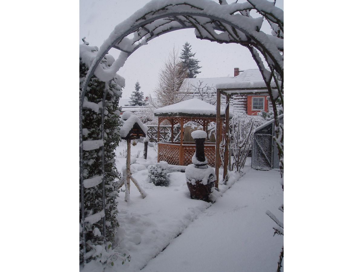 Ferienwohnung heyne dresden mei en herr andreas heyne for Fischteich im winter