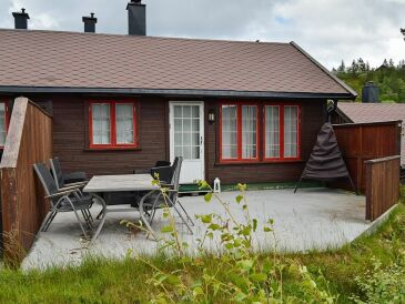 Ferienhaus Bortelid / Åseral, Haus-Nr: 76445