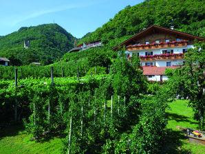 Ferienwohnung Schrenteweinhof für Paare