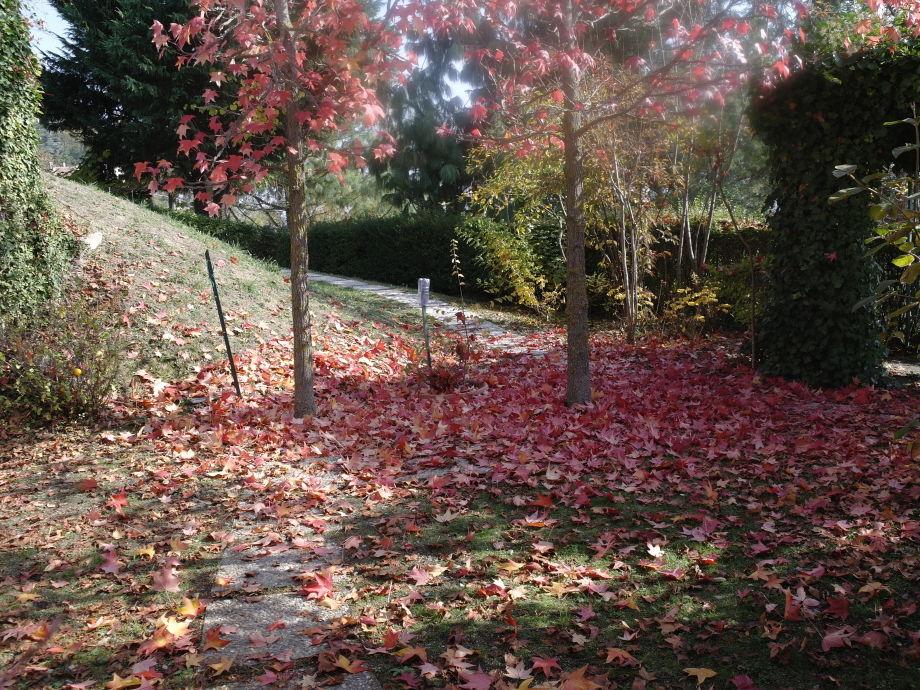Herbststimmung im Garten