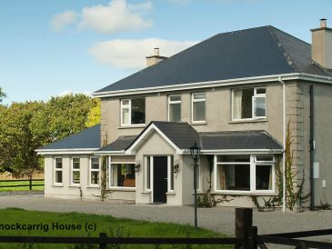 Holiday house Knockcarrig House