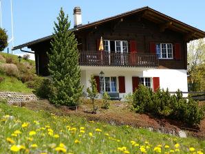 Ferienwohnung 2 Südchalet mit Blick auf Piz Beverin