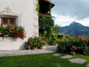 Ferienwohnung Braunhof