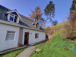 Ferienhaus Caer Mynach Cottage