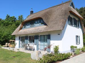 Ferienhaus Seemöwe