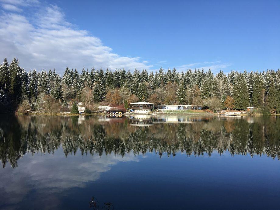 Ferienwohnung himmelsgaube oberharz goslar hahnenklee for Teich im winter