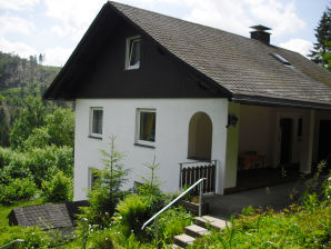 Ferienhaus Martel in Willingen