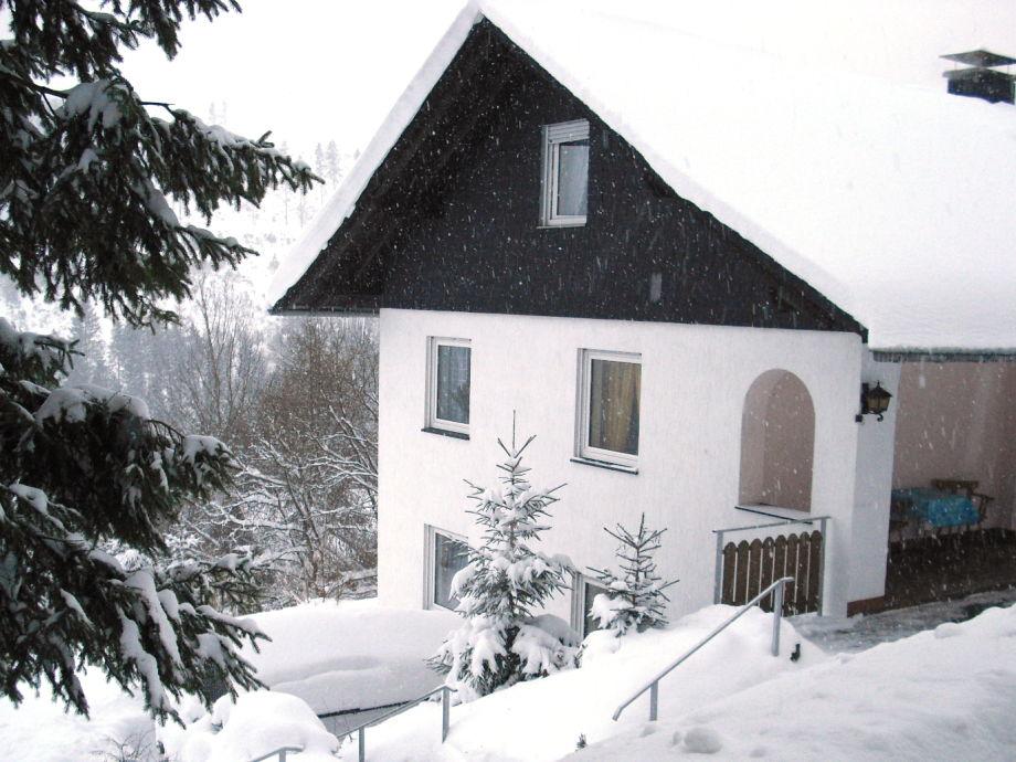 Ferienhaus Martel im Winter