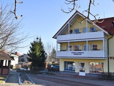 Ferienhaus Bad Suderode