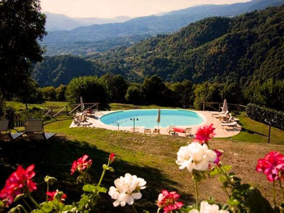 lovely garden surrounds the pool