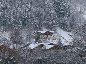 Ferienhaus Chalet Salzach
