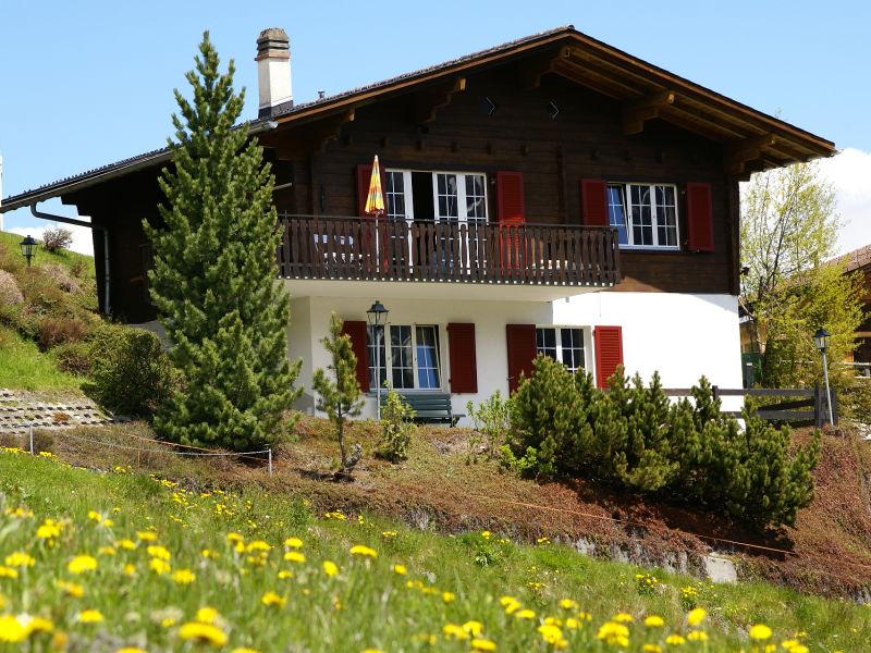 Ferienwohnung Südchalet mit schönen Blick auf Piz Beverin