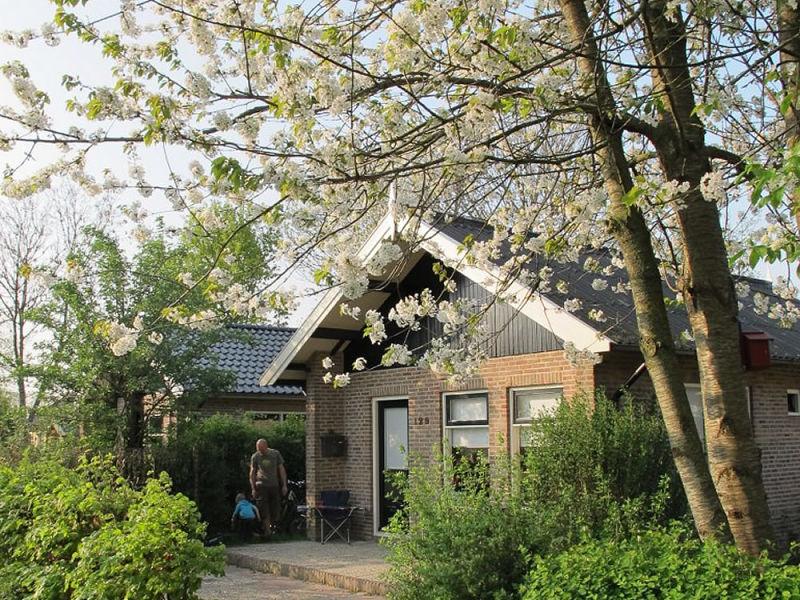 Ferienhaus Steenhuis