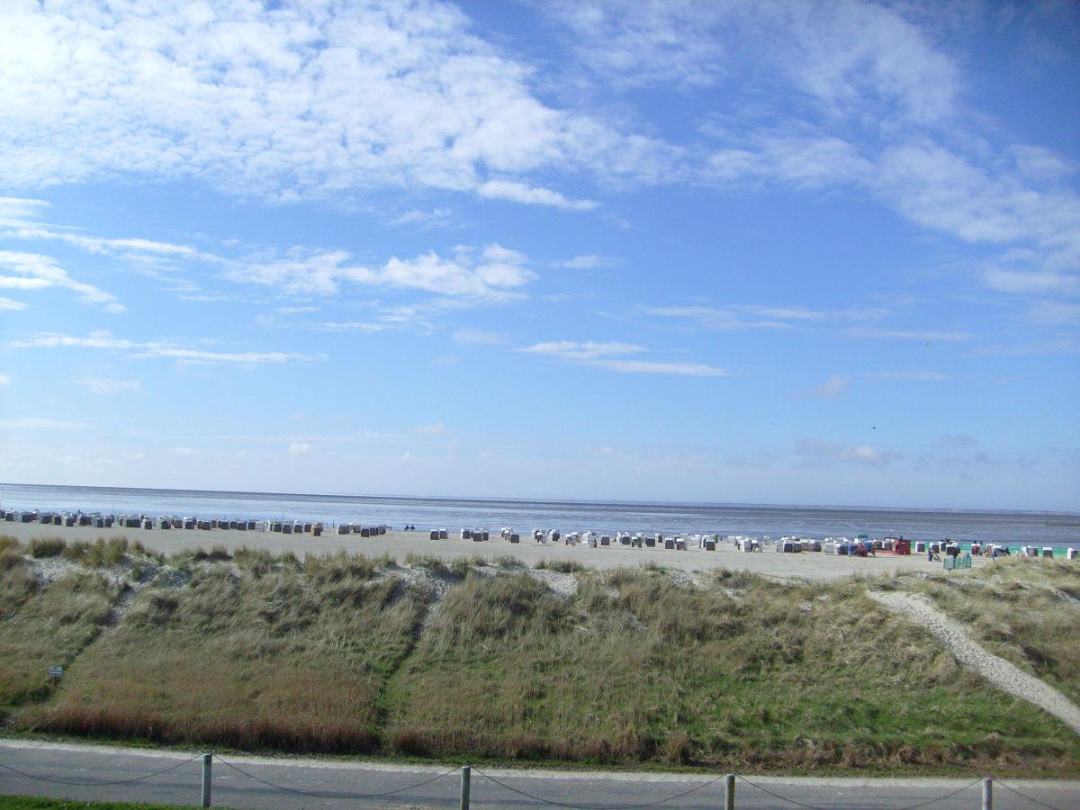 Ferienwohnung nordsee radler ostfriesland herr frank for Ferienwohnung nordseekuste