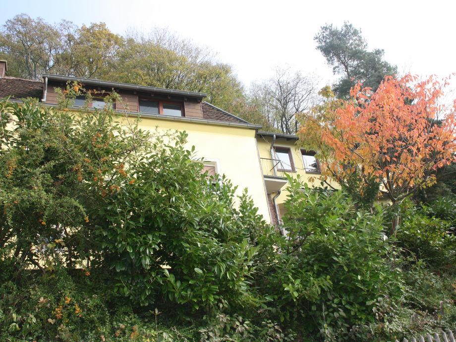 Haus von der Straße aus, die in den Wald führt