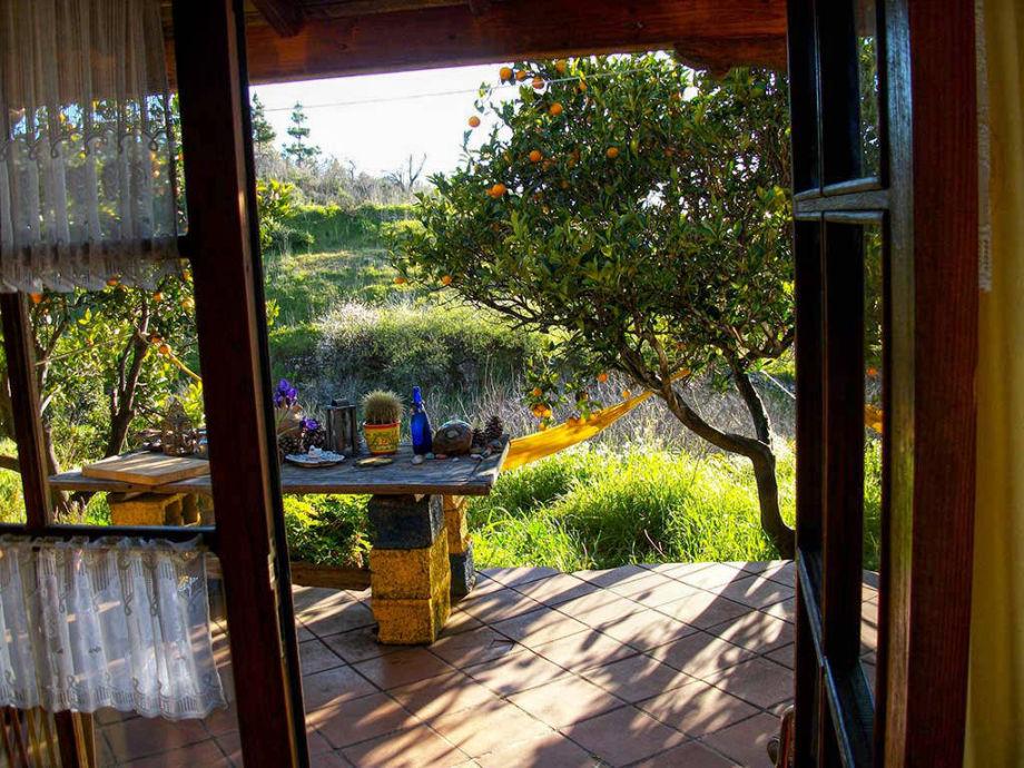 Blick aus der Küche durch die offene Tür