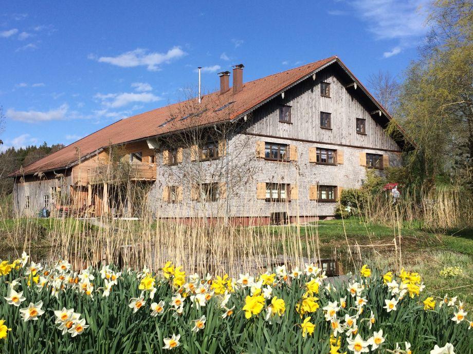 Haus Gartenseite im Frühjahr