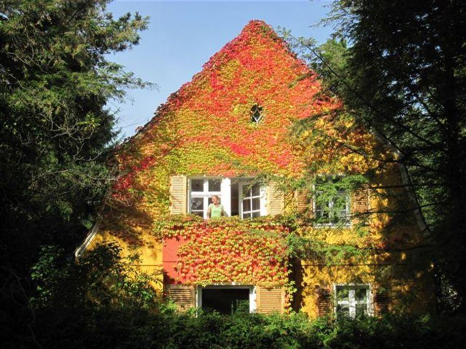 Our house in autumn