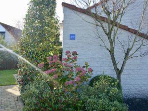 Ferienhaus Ooghduyne 49D