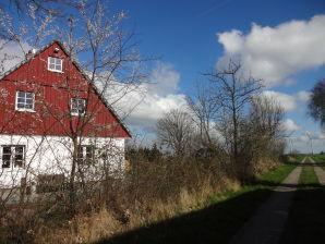 Ferienhaus Jack Cogans Nordsee-Detektei