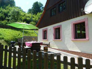Ferienhaus KZN170 in Zacler