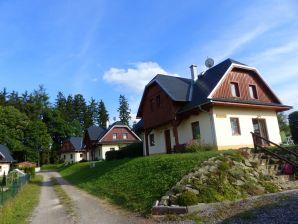 Villa KTG410 in Stare Buky