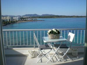 Apartment Luxury Penthouse