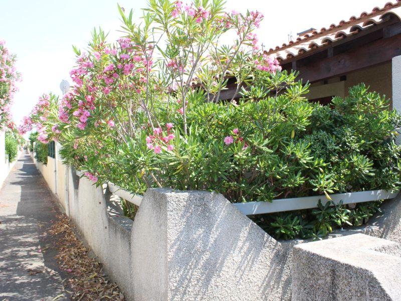 Ferienhaus in der Residenz Hacienda