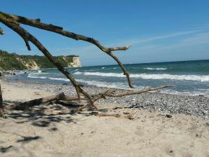 Ferienhaus Strandläufer