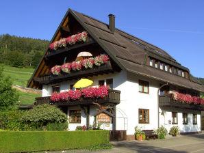 Haus Klumpp - Ferienwohnung Freyenhöfe