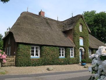 Ferienhaus Green Hüs