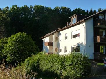 Holiday apartment Rhön Bergblick in Tann