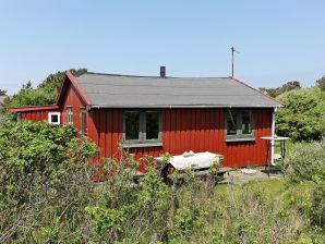 Ferienhaus Fanø, Haus-Nr: 66294