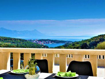 Ferienhaus mit Pool, Insel Brac. Neu 2017!