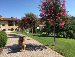 Ferienhaus Casa Cascinotta